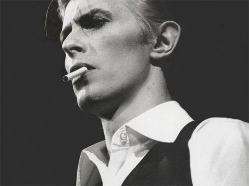 david-bowie-tribute