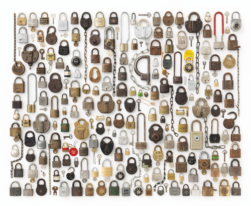 LOCKS / Things Organized Neatly, book by Austin Radcliffe