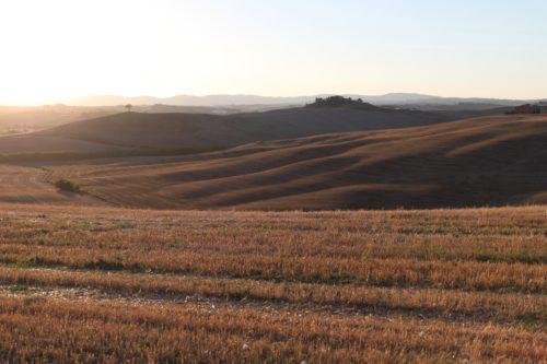 Tuscany fields / Seta Zakian