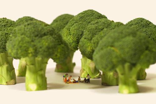 miniature calendar tatsuya tanaka broccoli picnic