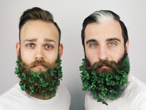 The_Gay_Beards_green