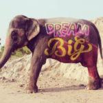 Type on elephant