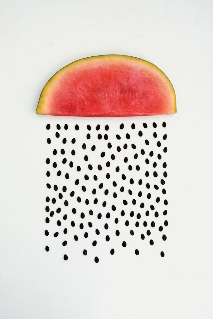 WATERMELON / Things Organized Neatly, book by Austin Radcliffe