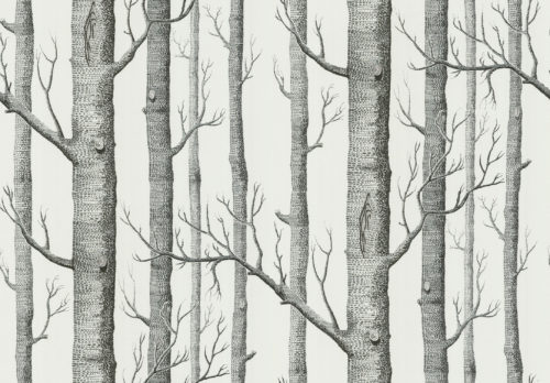 Woods wallpaper / Cole & Son