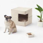 Minimalist pet accessories