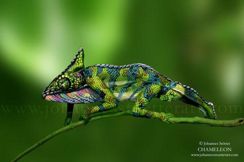 chameleon bodypainting by johannes stoetter